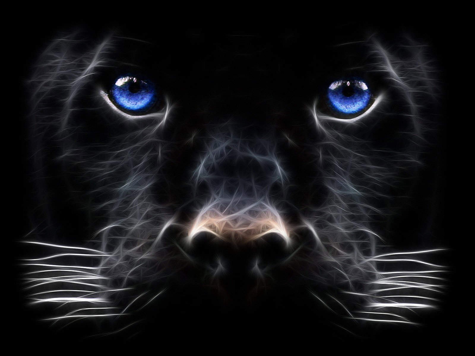 Power Animal of the Week – PANTHER