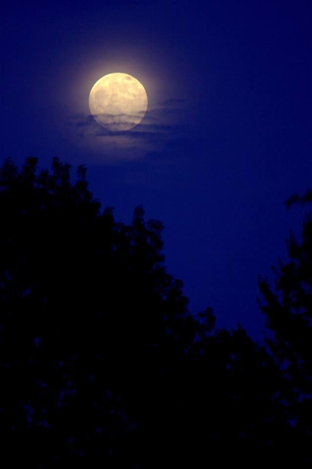 Power-Full Moon in Capricorn