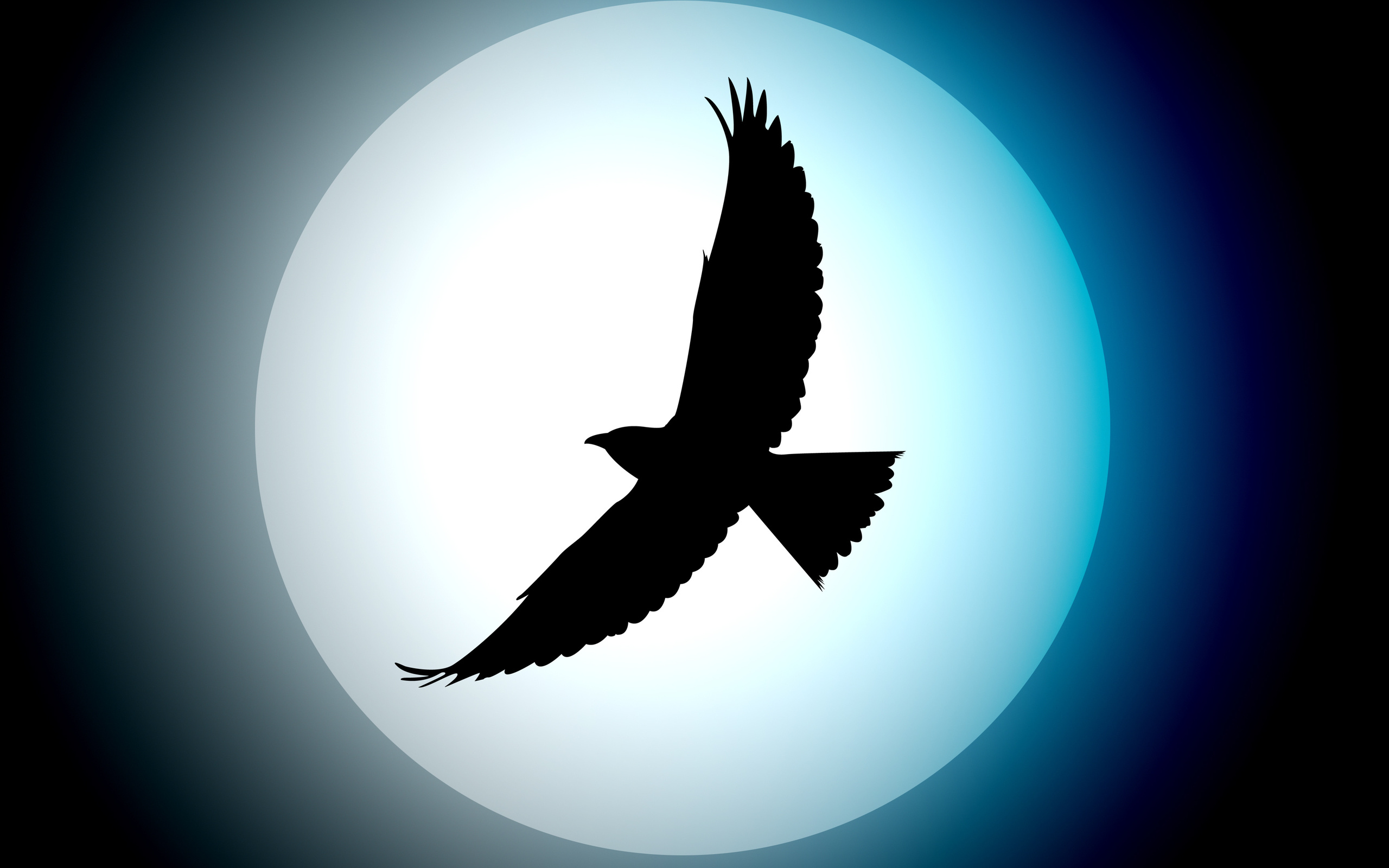 Full Moon in Virgo Energies – The Truth Will Set You Free